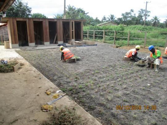 image: planting outside classroom